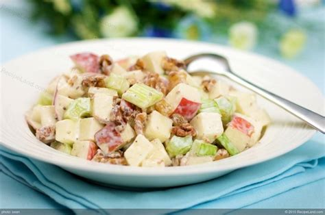 apple celery salad with creamy toasted walnuts dressing