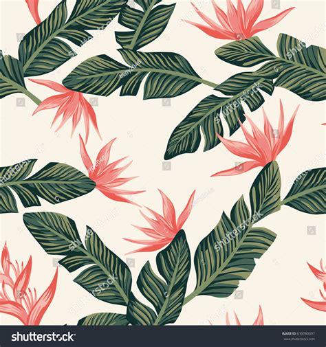 Cute Cactus Pots beach cheerful seamless pattern wallpaper tropical stock