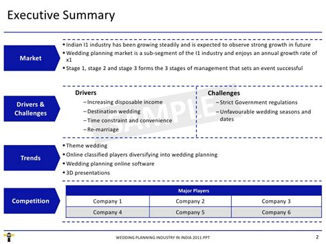 executive summary for resume project management example new print