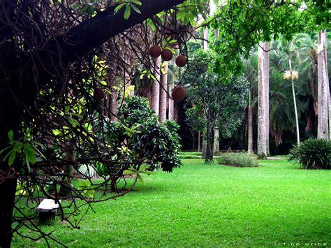 imagenes de jardines hermosos file jardin botanico ccs jpg wikimedia commons
