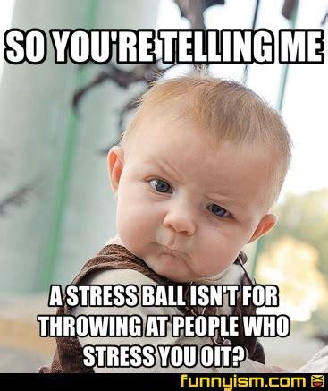 Funny Stress Memes - funny stress memes 28 images image gallery stress meme