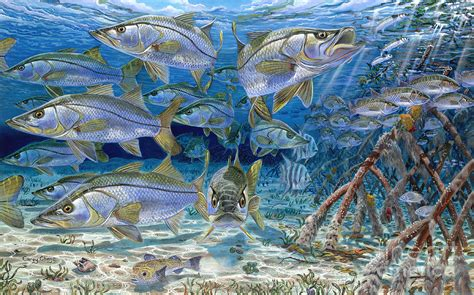 Metal Fish Wall Decor Snook Cruise In006 Painting By Carey Chen