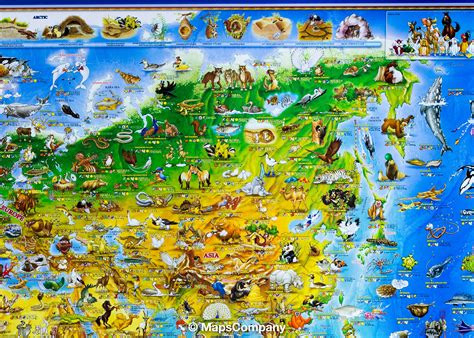Animal World 4 wall map animals of the world laminated hanging metal