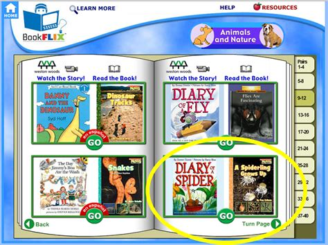 bookflix new year spider week visual plans by the