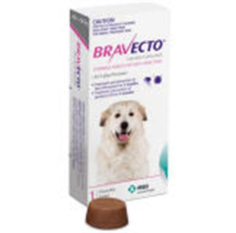 bravecto side effects in dogs flea allergy dermatitis in dogs symptoms treatment