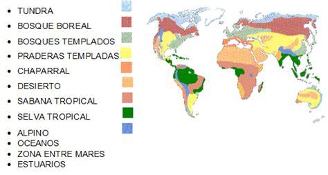 libro que son los biomas ciencias b 193 sicas saber principales biomas del mundo