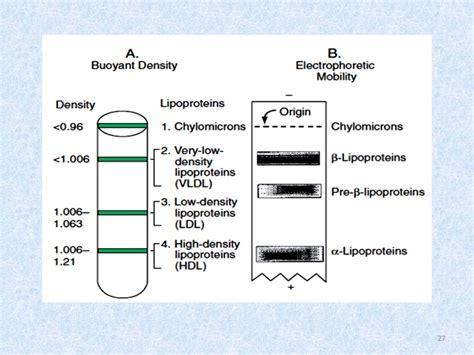 kimia klinik referat