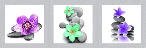 Bilder Mit Steinen Und Blumen by Kunstdruck Gerahmt Set Steine Blumen Bild Wandbild Bilder