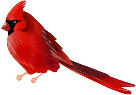 cardinal clip cardinal clip clipart of a cardinal clip net
