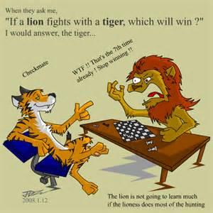 Tiger Vs Jaguar Who Would Win Vs Tiger By Kyvndudeguy On Deviantart