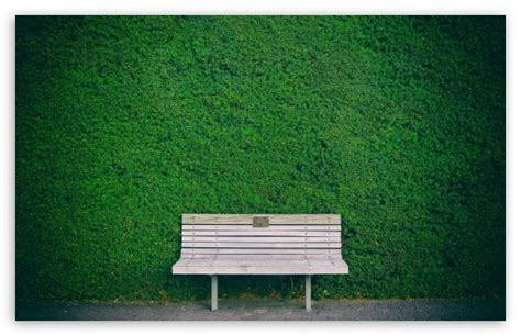 green bench definition wooden bench green hedge 4k hd desktop wallpaper for 4k