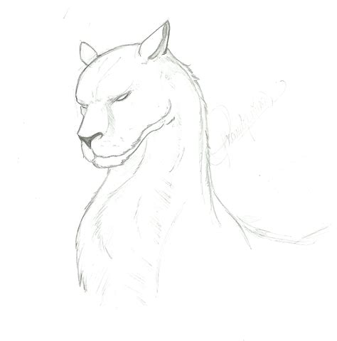 imagenes originales de animales dibujos originales taringa