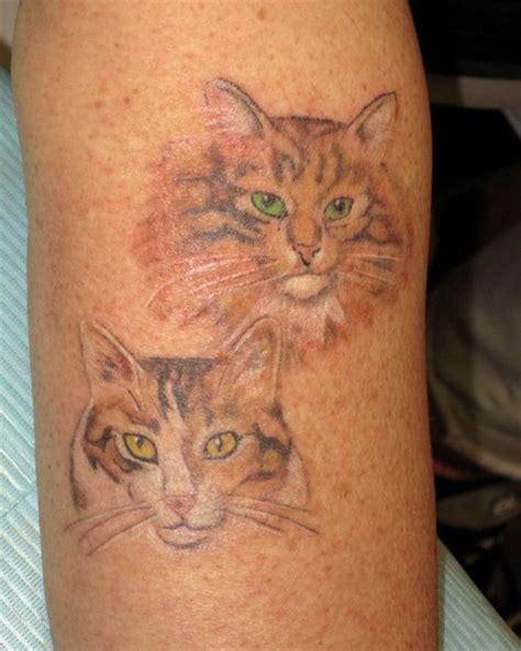 cat tattoo in memory cat memorial tattoos tattoos