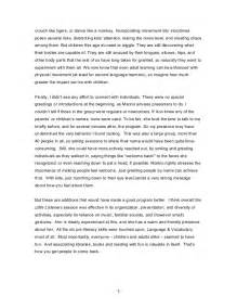 Observation Essay by College Essays College Application Essays Child Observation Essay