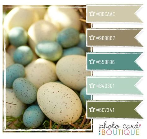 robins egg color 28 images color crush robin s egg 16 best paint colors i ve used and can vouch for images on