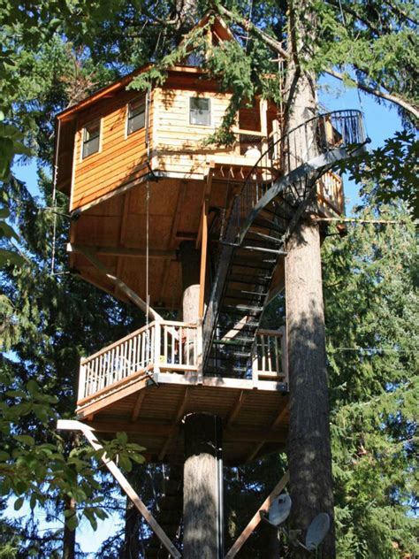 Hgtv Home Decorating Shows Treehouses For Kids And Adults Hgtv