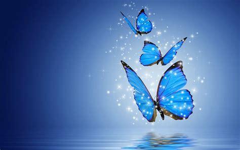 Download Blue Butterfly Wallpaper Gallery