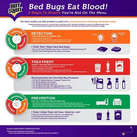 bed bug treatment home depot hot shot bed bug treatment bundle pack hg 96295 the home