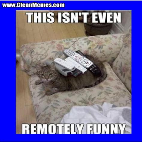 Hilarious Clean Memes - star wars cat meme