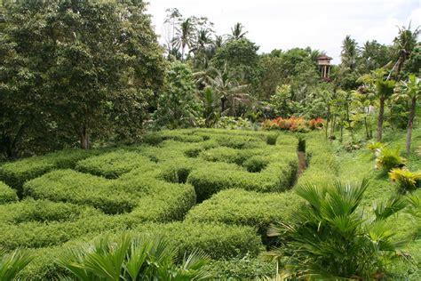 Ubud Botanic Garden Bali Botanic Gardens