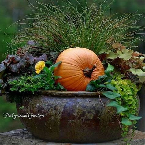 fall pumpkin decorations outside 1000 ideas about decorating front porches on