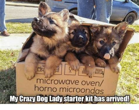Dog Lady Meme - microwave oven e horno microondas my crazy dog lady