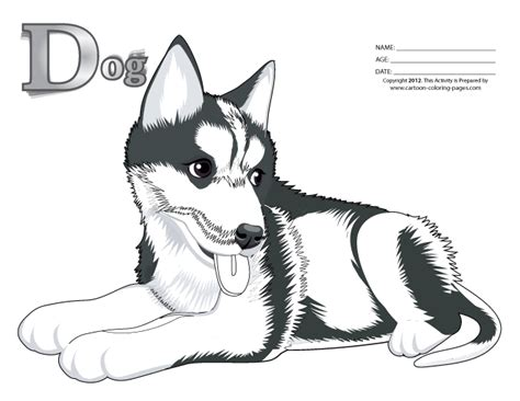 coloring pages of realistic dogs free coloring pages of realistic dog