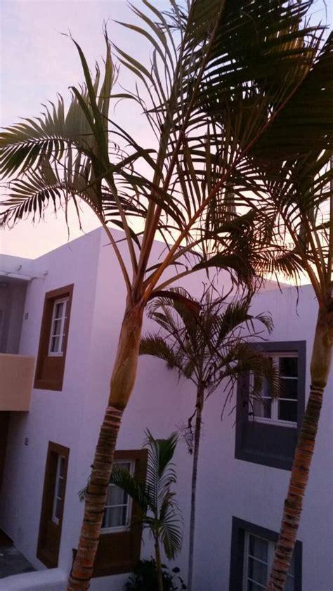 apartamentos  morromar lanzarotepuerto del carmen hotel reviews tripadvisor