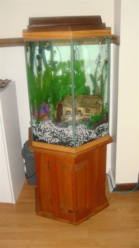 100 gallon octagon fish tank   55 Gal hexagon fish tank (acrylic) with black stand. Comes