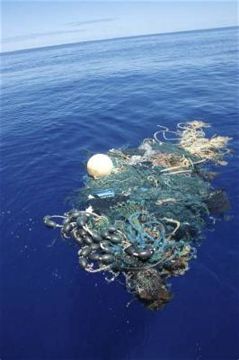 Expedition to the ?Great Ocean Garbage Patch?   Marine Science Today