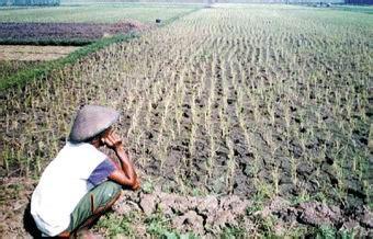 Bibit Lele Sangkuriang Boyolali petani miskin harga hasil bumi naik sarjana pertanian apa