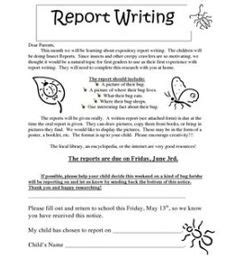 Parent Letter Bug Club 1000 Images About Insects On Ladybugs Report Writing And Glyphs