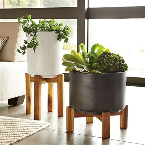 Indoor Planters by Gorgeous Indoor Planters You Will Fall In With