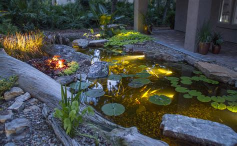 aquascape pond lights led pond lighting premiere aquascapes