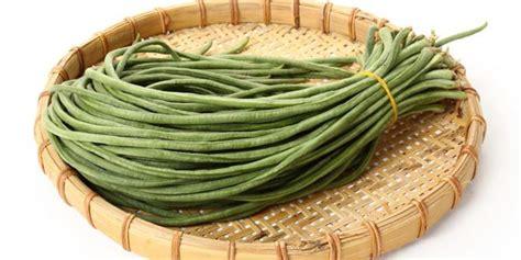 Benih Kacang Panjang Bola Dunia kacang panjang sumber folat yang baik untuk ibu