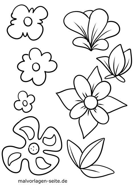 Mewarnai Bunga Anggrek - HeloGan