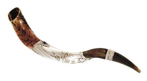 the shofar in zion yemenite shofar silver plate small quot the trumpet in