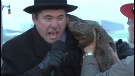 groundhog day jimmy jimmy the groundhog is a bit snippy before that cup