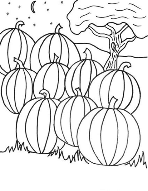 pumpkin patch coloring pages coloring pages