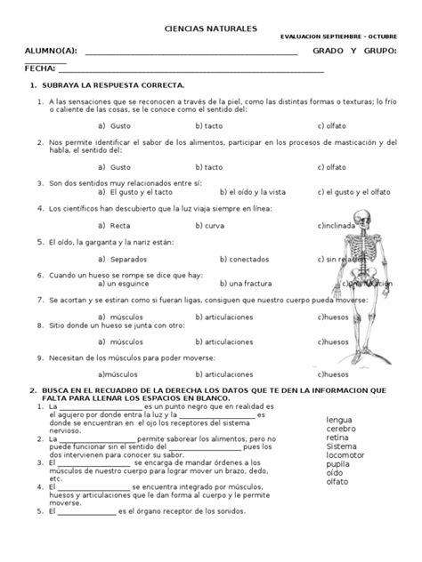 Examen De Ciencias Naturales Quinto Grado Bloque 2   examen ciencias naturales primer bimestre cuarto grado
