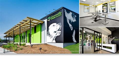 17 best images about animal shelter ideas on pinterest
