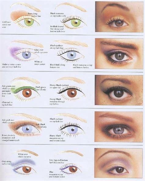 25 best ideas about eye types on eye shape
