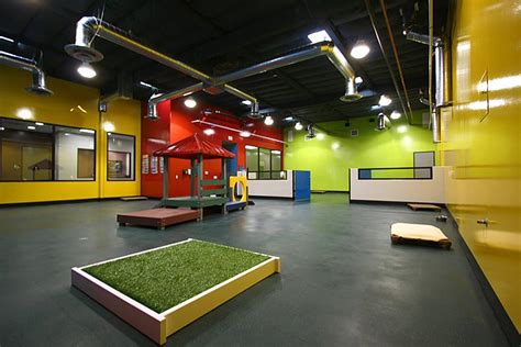 day care for puppies daycare flooring kennel flooring and agility flooring allied products sports