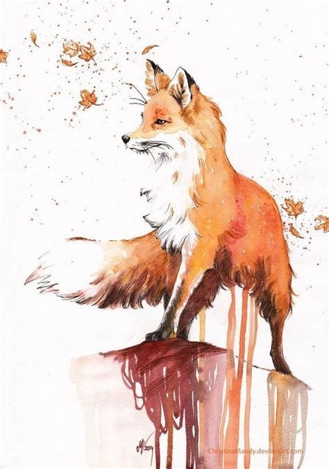 imagenes de zorros a lapiz las 25 mejores ideas sobre dibujos de lobos en pinterest
