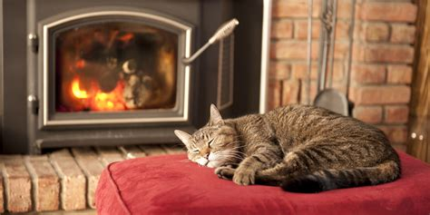 9 ways to keep your home warm without turning up