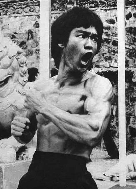 bruce el alce y 454 best images about people bruce lee on bruce lee quotes mma and way of the