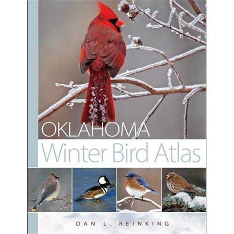 oklahoma winter bird atlas books buteo books aba sales oklahoma