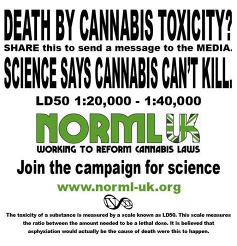 Marijuana Overdose Meme - pathologist dr kudair hussein incorrectly believes