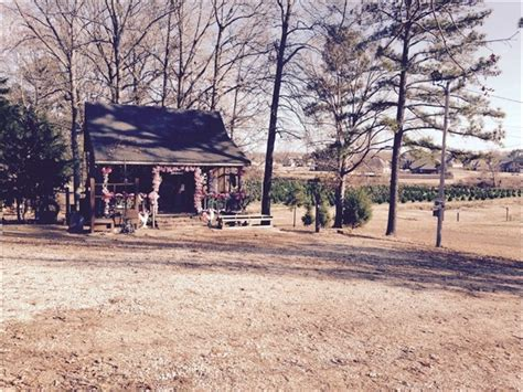 mississippi christmas tree farm nesbit ms real estate nesbit homes for sale re max