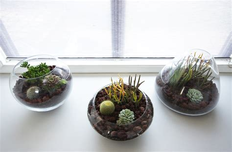Handmade Terrariums - brick house